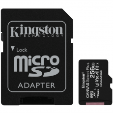 Kingston microSDXC 256GB Canvas Select Plus
